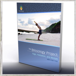 Blissology cover
